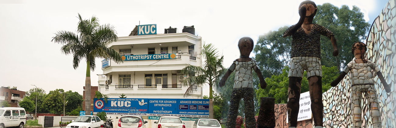 Kapoor's Kidney and Urostone Hospital
